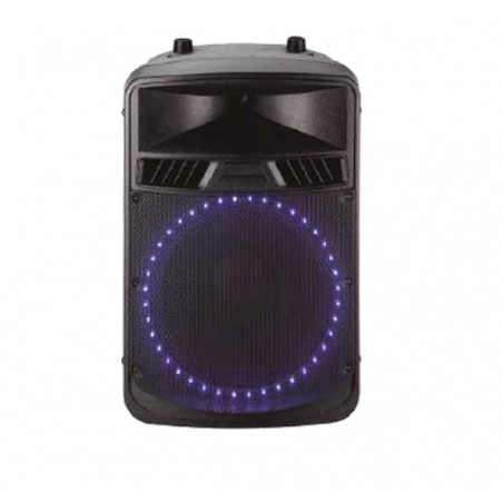 "PORTABLE AUDIO SPEAKER BOX 12"" 100W BT WITH LED STRIP"