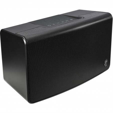 Portable bluetooth PA Speaker
